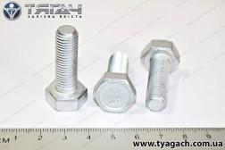 Болт М10х30 багатоцільовий КамАЗ (вир-во Белебей)