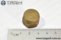 Гайка М12 з ковпачком водяного насосу КамАЗ 740 (вир-во Росі...